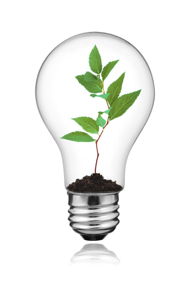 Managed Print Services (MPS) Programs are Naturally Green